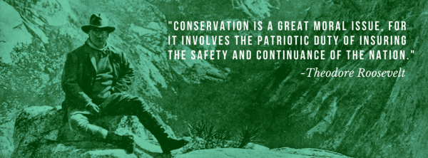 Teddy Roosevelt on conservation