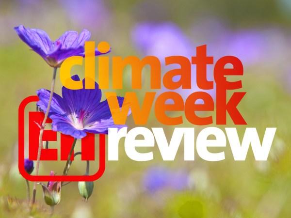 Ecoright climate change news