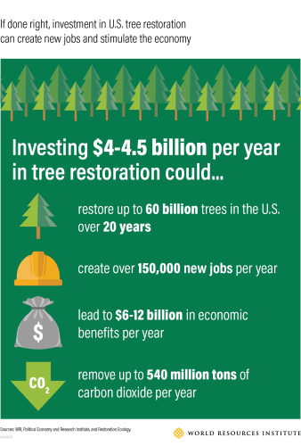 Trillion Tree Act planting initiative for jobs and the economy