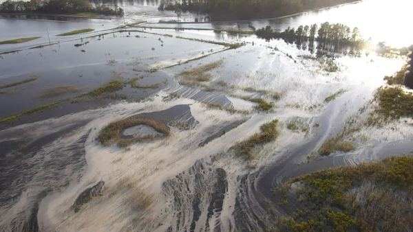 Yes, this Duke Energy, with the giant ash pond spills