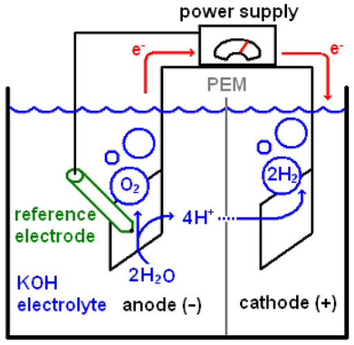Hydroxyl ions move one way, and give up their oxygen atoms at the anode to form molecular oxygen. The leftover hydrogen ions move the other way, and form hydrogen molecules at the cathode.