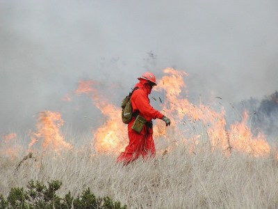 Controlled fire burn in California (Photo CC by Ken Ichi Ueda on Flickr)
