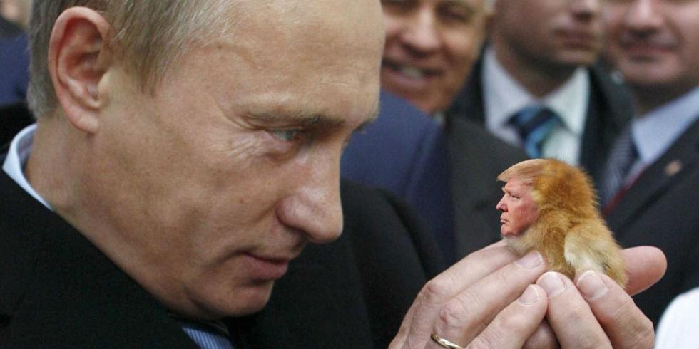 Contundente cachetada de Putin a EEUU y sus aliados europeos. Por Patricio Montesinos