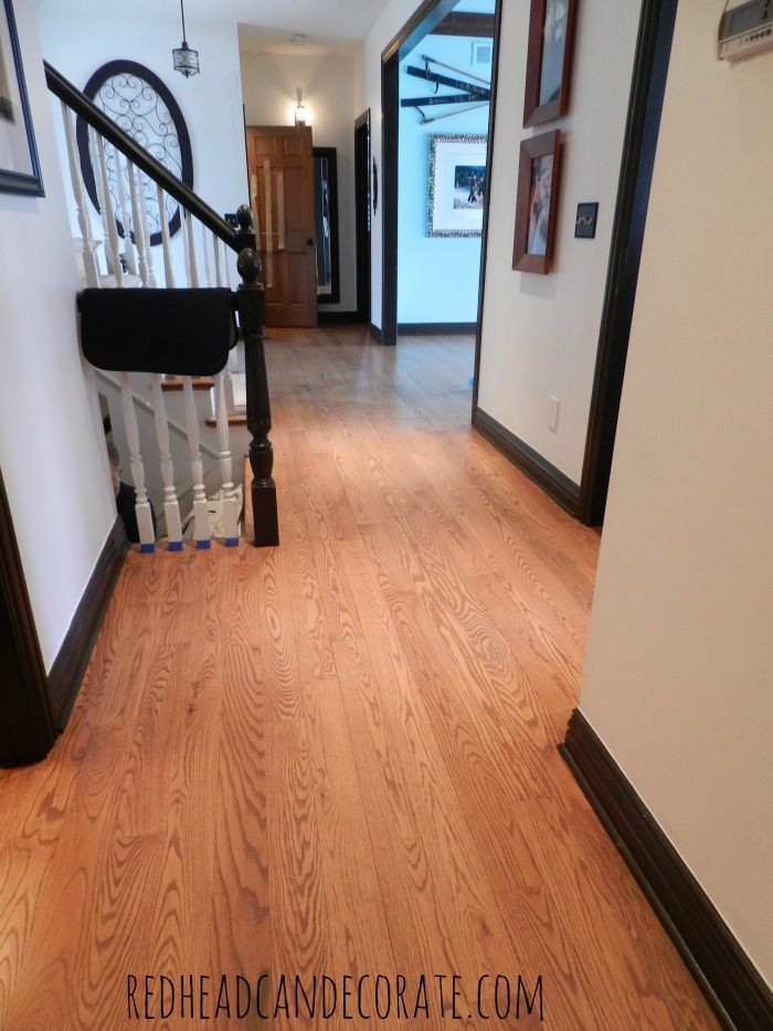 No Sanding Non Toxic Wood Floor Refinishing Part 2
