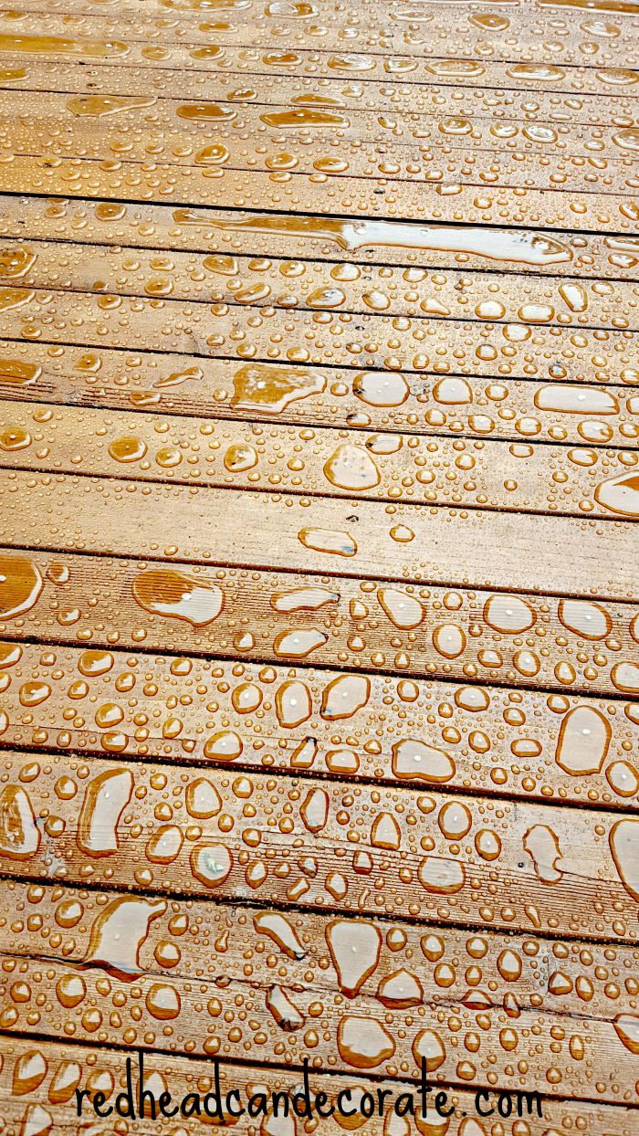 Thompson's WaterSeal Deck Stain