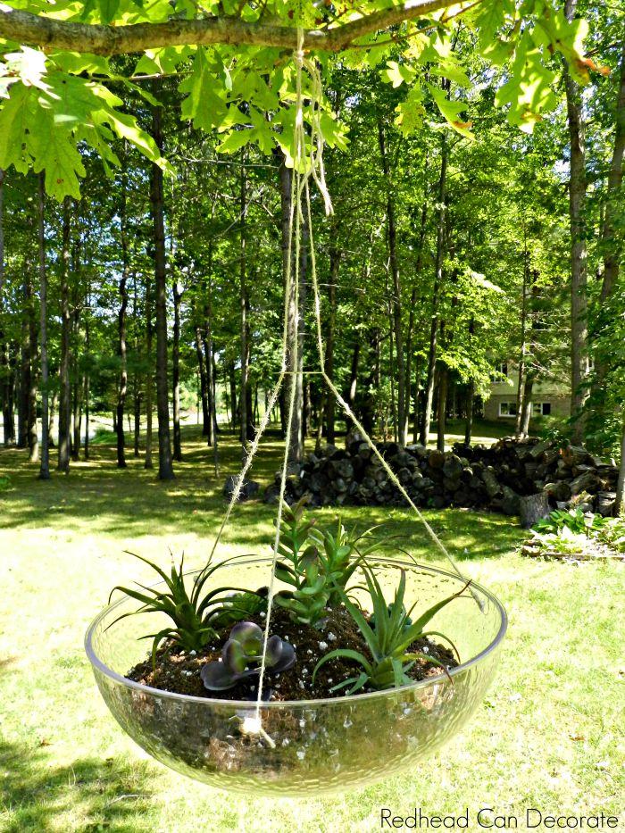 DIY Succulent Planter