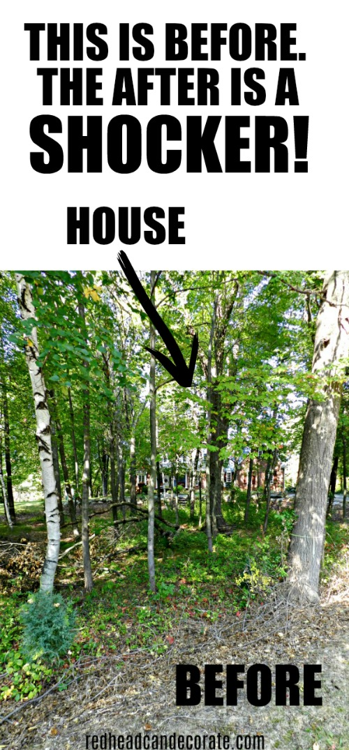 Learn how this Michigan Tree Thinning Home Makeover will actually help the other trees thrive and become strong beautiful healthy trees without crowding the home.
