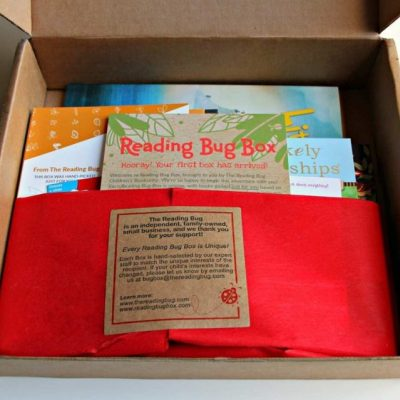 Books Selected Just For You, Delivered To Your Door By The Reading Bug Box #Review @ReadingBugBox