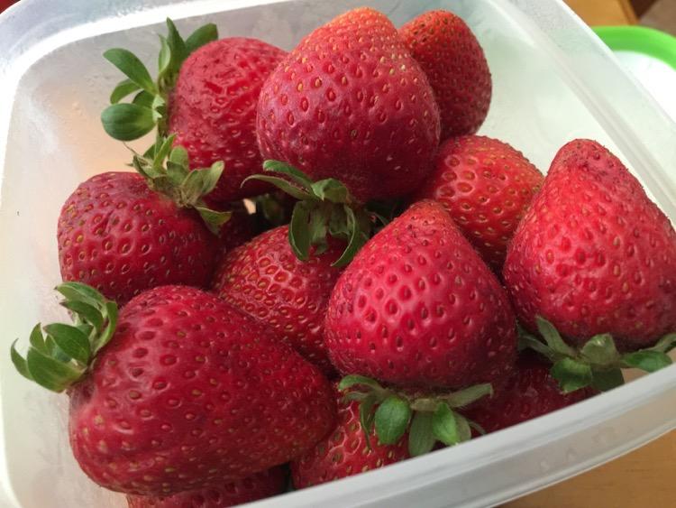 #FreshWorks #Fruit #Fresh #food #Foodie #LongLiveProduce #ad