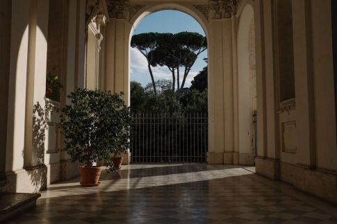 Hallway with Plants #Home #decor #living #plants #ad