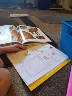 kids love notebooking
