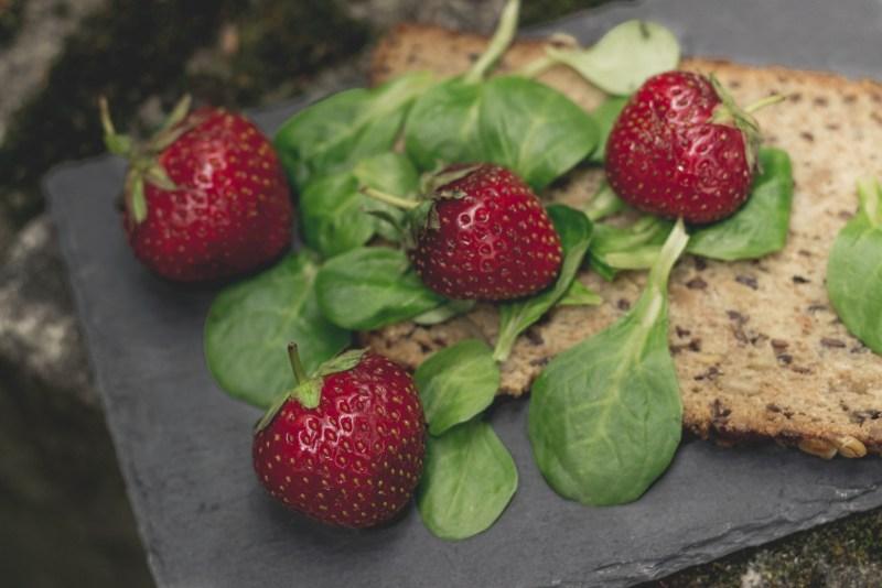 redheadventurer-liza-laboheme-tips-day-at-the-lake-food