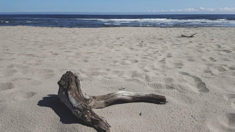 redheadventurer-liza-laboheme-beach-Kouchibouguac (6)