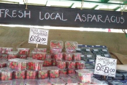 Of course we came home with lots of local strawberries!
