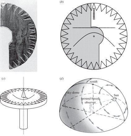 8620e20200f8 Un misterioso reloj de sol puede ser la clave sobre las navegaciones ...
