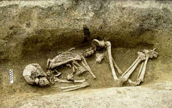 esqueleto austria