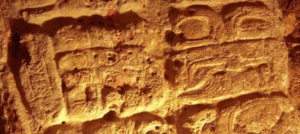 estela maya 44