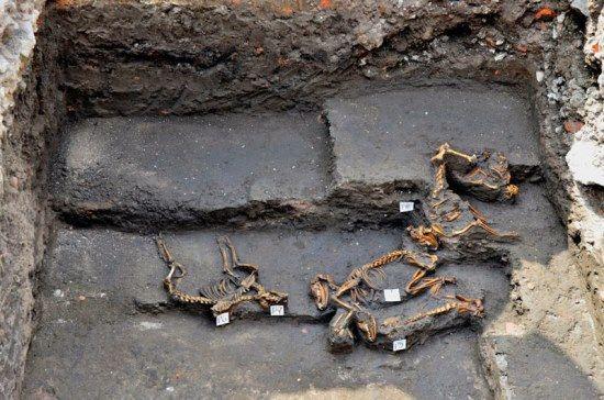 enterramiento canino azteca