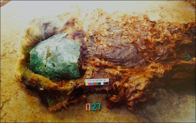 momia siberia