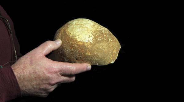 Cráneo hallado en la Cueva Manot