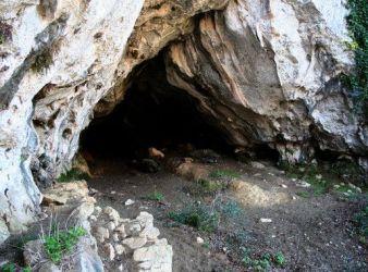 cueva de amalda neandertales y Homo sapiens