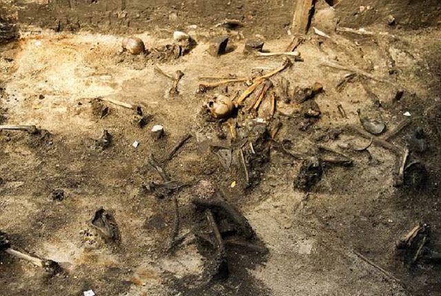 restos oseos dinamarca