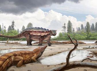 reconstruccion anquilosaurio