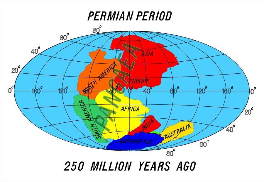 pangea periodo permico