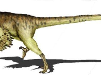 dinosaurio adasaurus