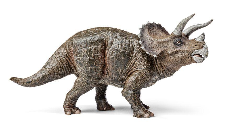 triceratops dinosaurio