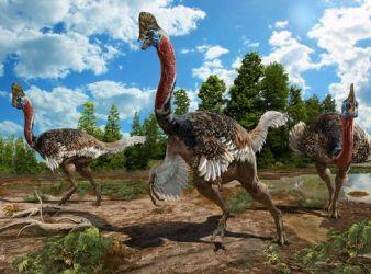 nueva especie dinosaurio Corythoraptor jacobsi