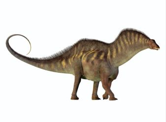 dinosaurio amargasaurus