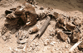 restos incas lambayeque