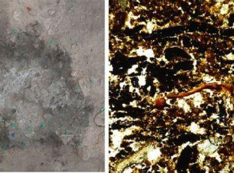 analisis hogueras neandertales