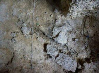 restos de madera neandertal en barcelona