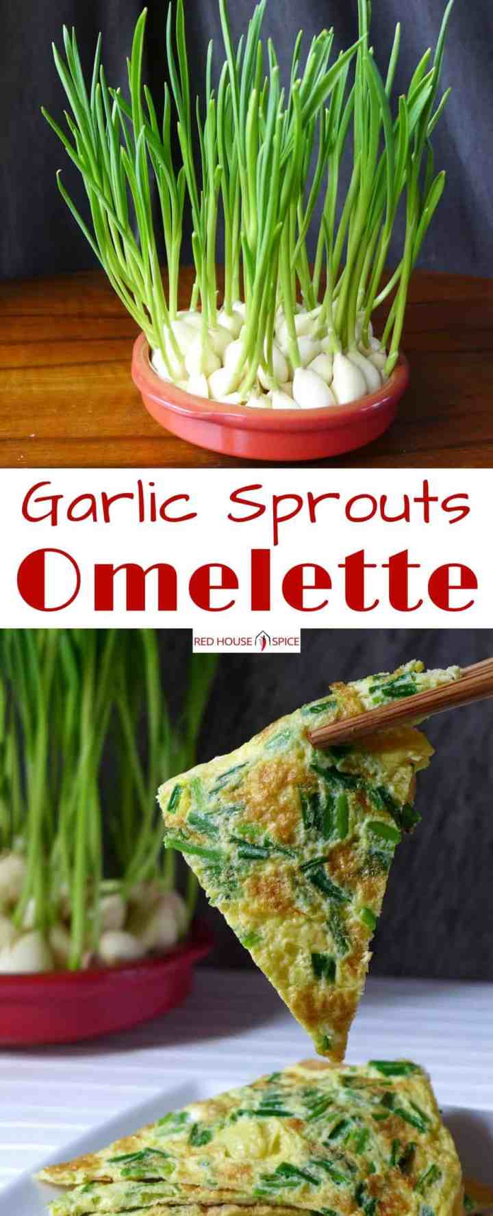 Don't discard sprouted garlic! Grow them in water instead. Homegrown garlic sprouts add great flavour to omelette, noodles, salad, stir-fry, etc.