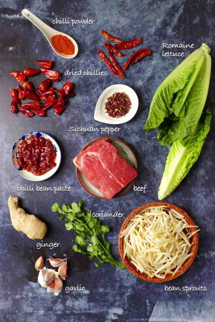 A group of ingredients for making Sichuan boiled beef.