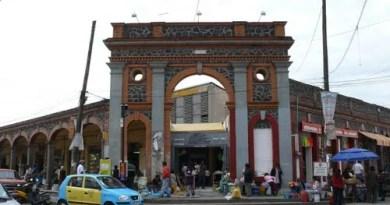 Mercado Domingo Arenas