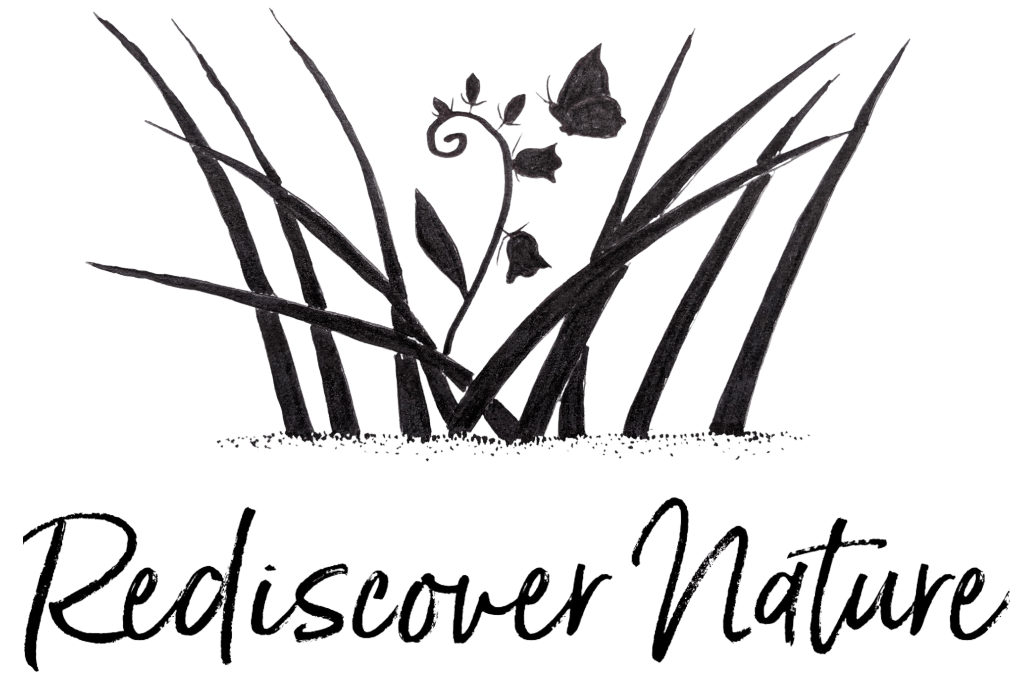 Rediscover Nature