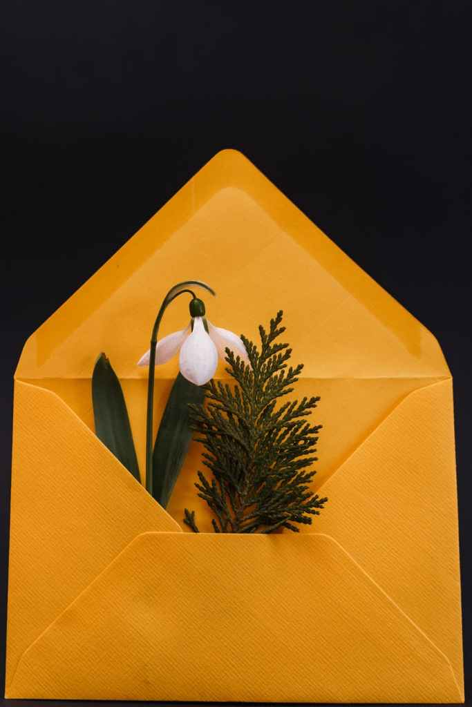 paper envelope with blossom and twig