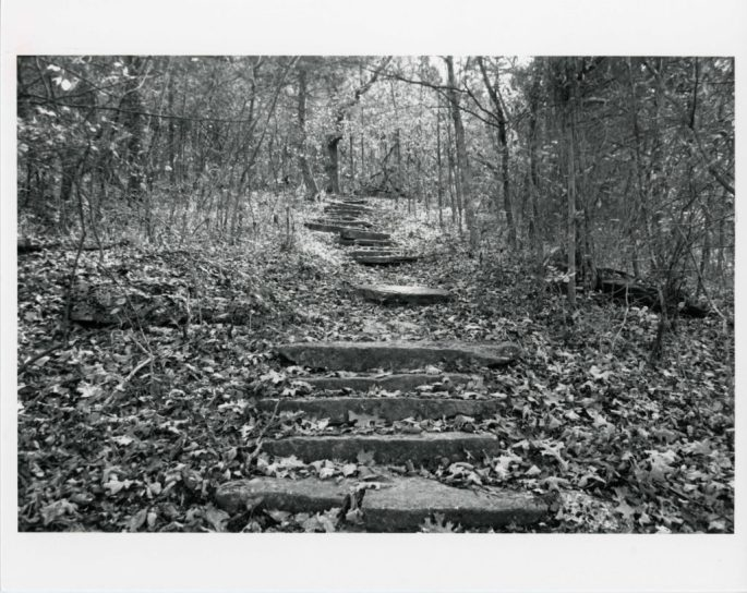 view of limestone steps going through woods