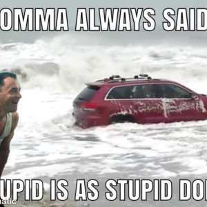 The RedJeepDorian - Forrest Gump Stupid Is As Stupid Does Meme 03