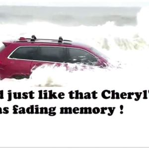 The RedJeepDorian - Just Like That Cheryl's Shed Was A Fading Memory Meme