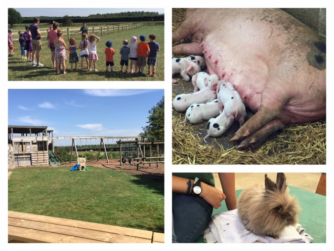 roves farm, days out, kids