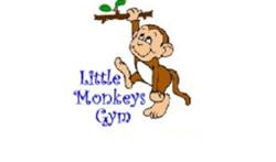 little monkey, gym, preschool, under 5s, kidlington, stonesfield