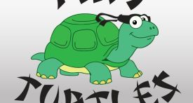 tiny turtles, bicester, martial arts for kids