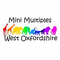 multiple group witney, twin group witney, twins toddler group witney