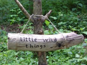 forest school chipping norton, little wild things oxfordshire