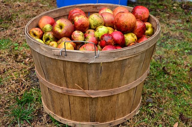 Apple Day Oxfordshire, Apple Day Berkshire
