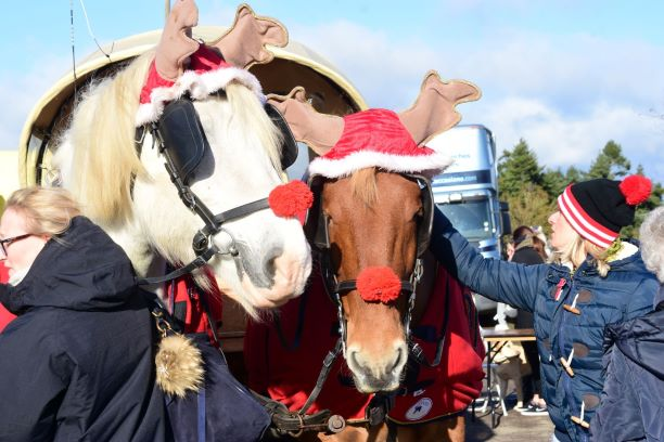 berkshire christmas festival, thatcham christmas festival